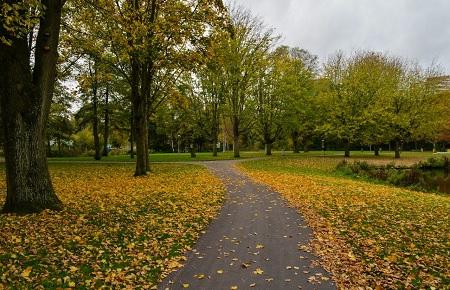 Amsterdam Rembrandtpark -