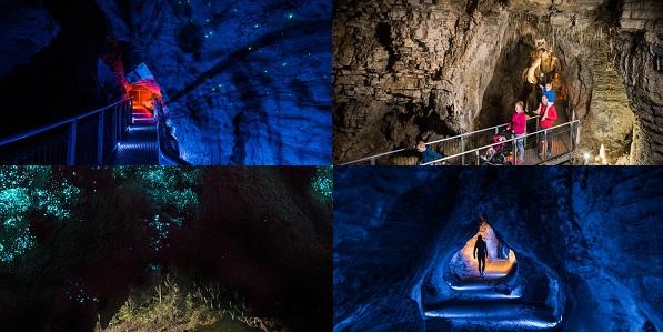 Waitomo Glowworm Mağaraları - Waitomo - Yeni Zelanda...
