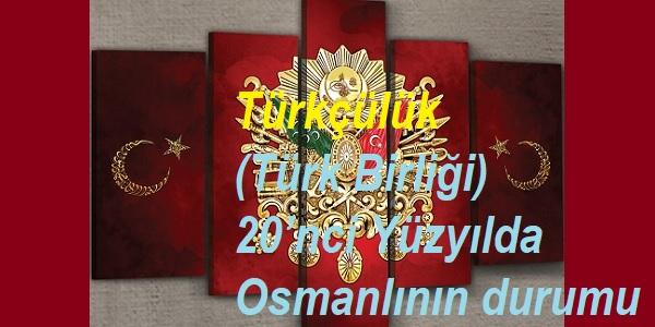 Türkçülük (Türk Birliği)-20'nci Yüzyılda Osmanlının durumu